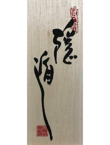 Togakure ryu Ninpo Taijutsu. Por Masaaki Hatsumi