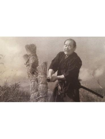 El espíritu de la espada. Por Nakamura Taisaburo